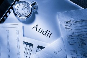 What are auditors
